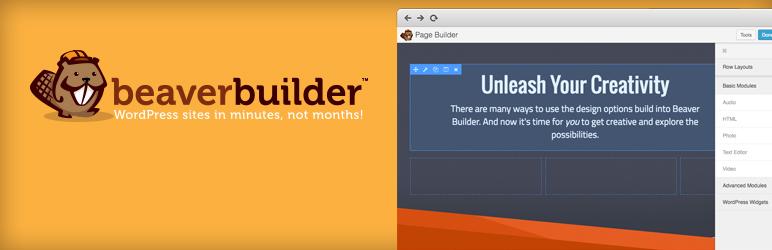 Beaver Builder banner-772x250